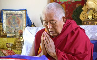 Special New Year's Broadcast with Tenzin Rinpoche: Long Life Mantra for H.E. Yongdzin Rinpoche