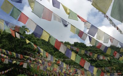 Ligmincha Celebrates Losar (Tibetan New Year) February 23