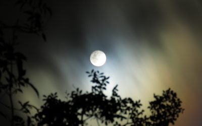 24-Hour Full Moon Practice: Mantra of Clear Light