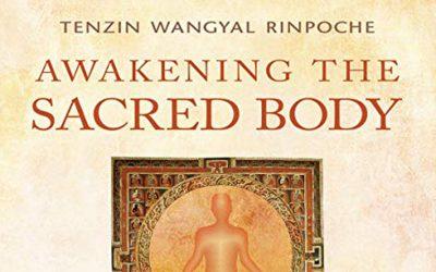 Two New Audiobooks by Tenzin Wangyal Rinpoche